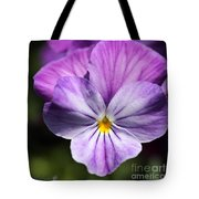 Viola Named Columbine Tote Bag