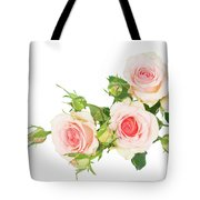 Garden Roses And Buds Tote Bag