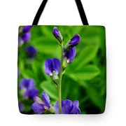 Violet Blue Tote Bag