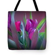 Violet Colored Tulips Tote Bag