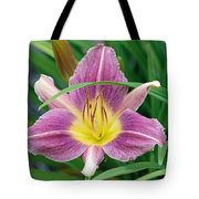 Violet Day Lily Tote Bag