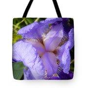 Violet Iris Tote Bag