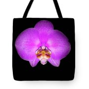 Violet Orchid On Black. Fantasy 7.21.17 Tote Bag