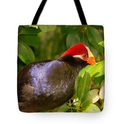 Violet Plantain Eater Tote Bag