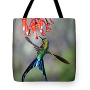 Violet-tailed Sylph Feeding Tote Bag