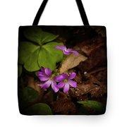 Violet Wood Sorrel Tote Bag
