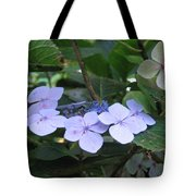 Violets O The Green Tote Bag