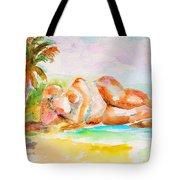 Virgin Cove Tote Bag