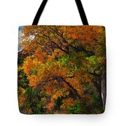 Virgin River Triptych Right Panel Tote Bag