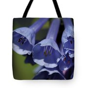 Virginia Bluebells Tote Bag