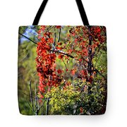 Virginia Creeper Tote Bag
