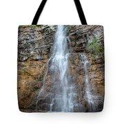 Virginia Falls - Glacier National Park Tote Bag