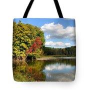 Virginia Kendall Park Tote Bag by Kristin Elmquist