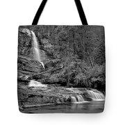 Virgnia Falls Pool - Black And White Tote Bag