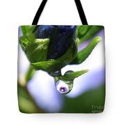 Vision In A Raindrop Tote Bag