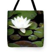 Vision Of Paradise Tote Bag