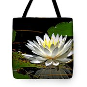 Visions Of Spring Tote Bag