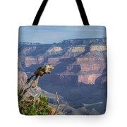 visit to Grand Canyon  Tote Bag