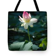 Visit To Lilly Pond 2 Tote Bag