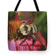Visitor Up Close Coneflower  Tote Bag