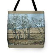 Visitors Tote Bag
