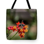 Visor Wearing Bee Pollinates A Colorful Flower Tote Bag