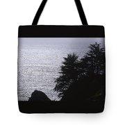 Vista - Julia Pfeiffer Burns State Park Tote Bag