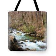 Vista Series 1237 Tote Bag