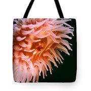 Vivid Anemone Tote Bag