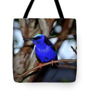 Vivid Blue Tote Bag
