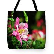Vivid Pink Columbine Tote Bag