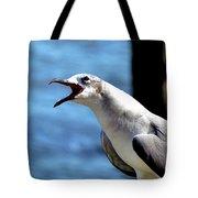 Vocal Sea Gull Tote Bag