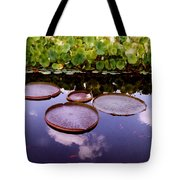 Voices In The Sky Tote Bag