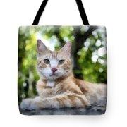 Volterra Italy Cat Watercolor Tote Bag