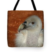 Vulture Portrait Tote Bag