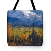 102238-v-w End Of Seven Sisters Mountain  Tote Bag