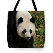 Waddling Giant Panda Bear In A Grass Field Tote Bag