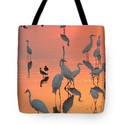 Wading Birds Forage In Colorful Sunset Tote Bag