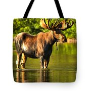 Wading For Breakfast Closeup Tote Bag