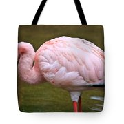 Wading In Water Tote Bag