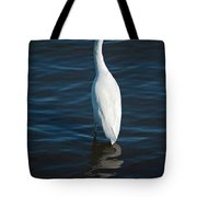 Wading Reflections Tote Bag
