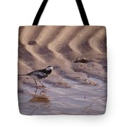 Wagtail On West Sands Tote Bag