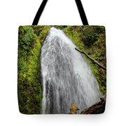 Wahkeena Falls At Footbridge, Oregon Tote Bag