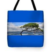 Waiehu Panarama Tote Bag