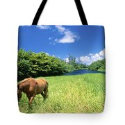 Wainiha Valley Tote Bag by Peter French - Printscapes