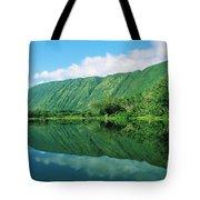 Waipio Valley Stream Tote Bag