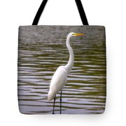 Wait And Rest Tote Bag