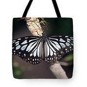 Waiting --- Rice Paper Butterfly Tote Bag