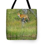 Waiting By The Water Tote Bag