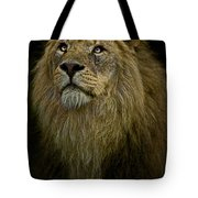 Waiting Expectantly Tote Bag